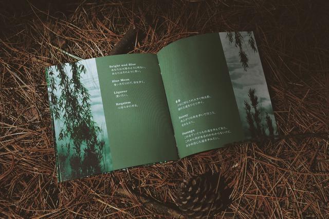 【取消】【上海站】日本指弹艺术家 GIN 2021 新专辑 《passage》巡演 LVH